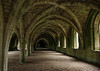 Fountains Abbey, July 2020 - 14