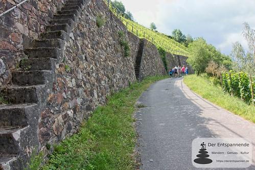 Weinwanderung mit Weingut Nies, Lorchhausen