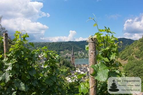 Lorchhausen - Weinwanderung mit Weingut Nies, Lorchhausen