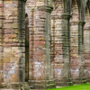 Fountains Abbey, July 2020 - 21