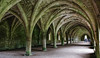 Fountains Abbey, July 2020 - 12