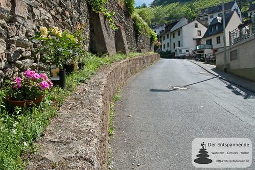 In Lorchhausen - Weinwanderung mit Weingut Nies, Lorchhausen