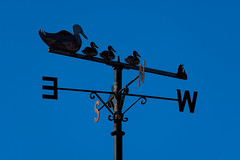 Photo of Duck and ducklings weathervane
