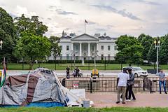 2020.08.06 DC Street, Washington, DC USA 219 17207