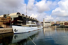 Oceander - Valencia Harbour