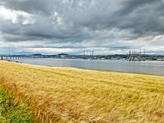 Photo of The river Tay and Dundee