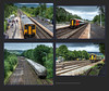 'Royal' 67005 Route Learner tries 4 times & Class 20 shunter at Earles Sidings - 6936+939+941+947