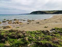 Photo of Beach at Pentewan