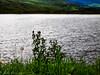 Brun Clough Reservoir 6 Aug 20 - 9