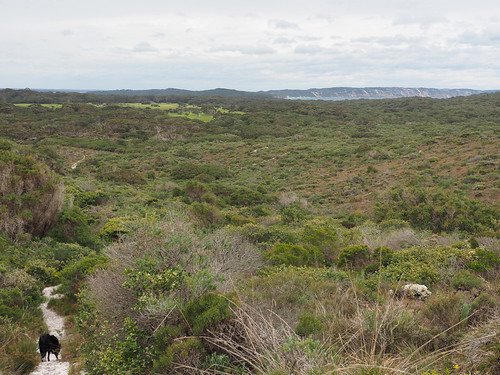 Lights Beach to Monkey Rock VII - Bibbulmun Track, Denmark, Western Australia