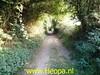 "2020-08-08 Avond wandeling   Schin op Geul 13 Km (21) • <a style=""font-size:0.8em;"" href=""http://www.flickr.com/photos/118469228@N03/50206049408/"" target=""_blank"">View on Flickr</a>"