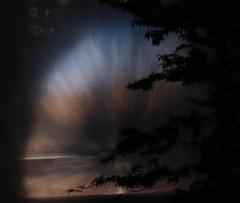 licht und Wasser