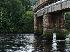 Photo of 2020 08 02 - Perth railway bridge 2