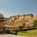 Jaipur IND - Amber Fort 19
