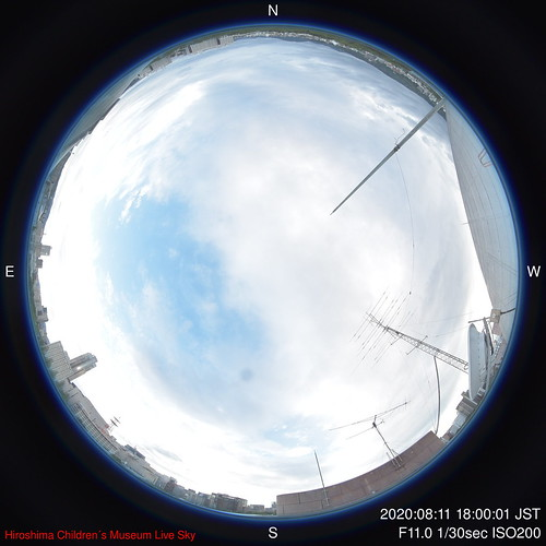 D-2020-08-11-1800_f