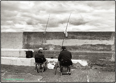 Photo of Fishing the Harbour Wall