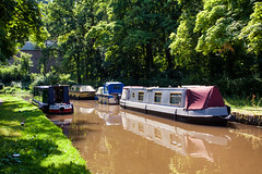 Photo of Along the canal