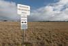 Plains Grassland (EVC 132)