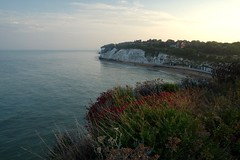 Photo of An evening walk with Max. Dumpton Gap to Broadstais and back...