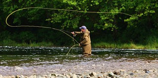 Copy of Freshwater - Fly Fishing Cast Loop - Panoramic