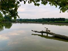 Photo of Earlswood lake