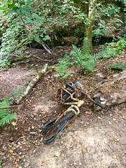Photo of Old bike 227*366 (2*592)