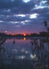 Photo of Dawn at the lake