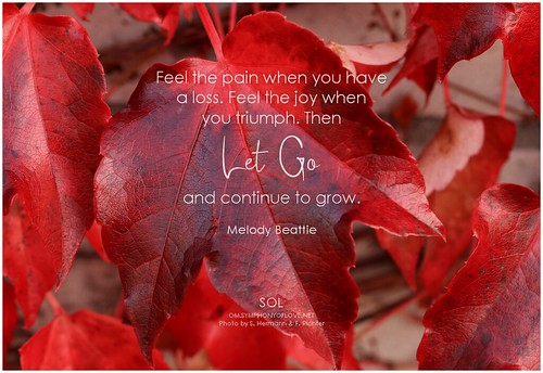 Melody Beattie Feel the pain when you have a loss. Feel the joy when you triumph. Then let go and continue to grow