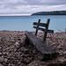 Wood bench, Lions Head 2269