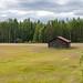Arctic Nature in Lapland, Finland