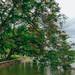 Ven hồ Gươm ( hồ Hoàn Kiếm)
