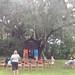 Gainesville_Thtr_0009