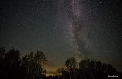 Stunning Milky Way