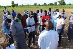 Agriculteur expliquant aux participants les pratiques cles & avantage de la RNA -kawetiane