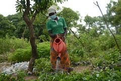 Elizabeth watering some of the seedlings 3