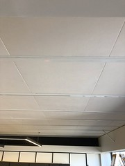 SerenityLite Ceiling Panels In Office