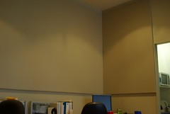 Serenity Wall Panel in Office