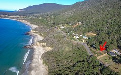 74 Blowhole Road, Eaglehawk Neck TAS
