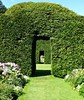 See through at the Historic Topiary Garden in South Cumbria