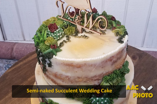 "Semi Naked Succulent Wedding Cake • <a style=""font-size:0.8em;"" href=""http://www.flickr.com/photos/159796538@N03/50276290421/"" target=""_blank"">View on Flickr</a>"