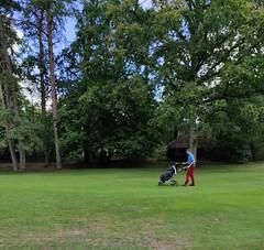 Golfeurs Sur Parcours Fontainebleau 9
