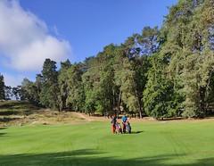 Golfeurs Sur Parcours Fontainebleau 1