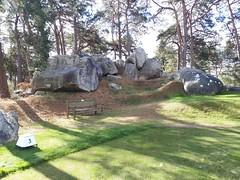 Parcours Fontainebleau 12