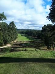 Parcours Fontainebleau 11