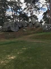 Parcours Fontainebleau 9