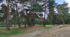 Parcours Fontainebleau 7