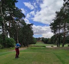 Golfeurs Sur Parcours Fontainebleau 4