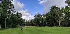 Golfeurs Sur Parcours Fontainebleau 3