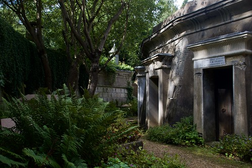 "Circle of Lebanon, Highgate Cemetery • <a style=""font-size:0.8em;"" href=""http://www.flickr.com/photos/66868863@N00/50290582368/"" target=""_blank"">View on Flickr</a>"