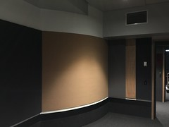 Reduced Noise SerenityLite Wall Panels